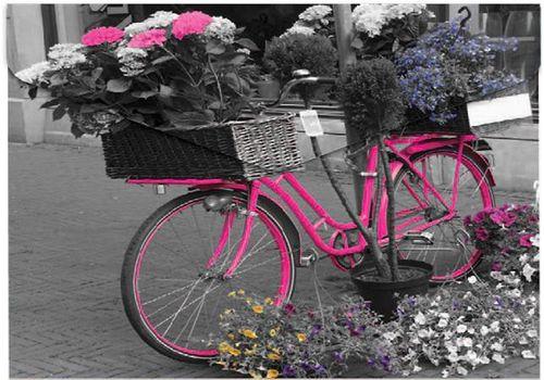 "Obal na patent, A4, PP, 160 mikrón, PANTA PLAST ""Bike"""