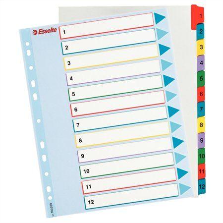 Register, laminovaný kartón, A4 Maxi, 1-12, prepisovateľný, ESSELTE