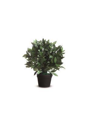 Vavrín, umelá rastlina,  50 cm PAPERFLOW